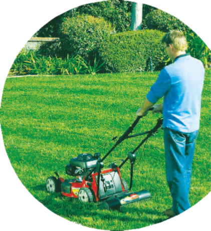 DM Cutting Hedge Lawn Mowing/Grass Cutting Service Covering Redditch